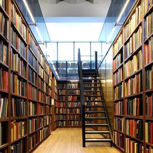 Библиотеки Новосиля