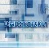 Выставки в Новосиле