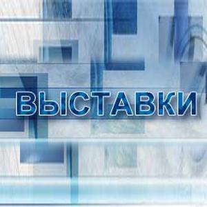 Выставки Новосиля